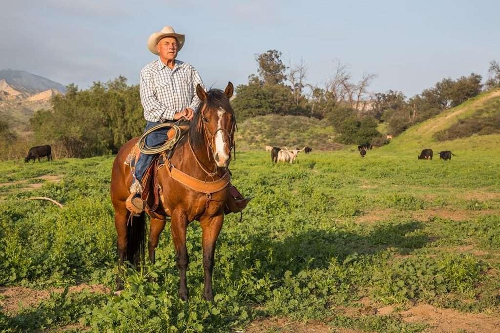 Honorary Vaquero Santa Barbara Fiesta Stock Horse Show