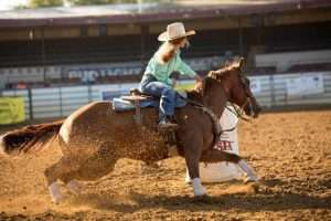 2018 Fiesta Rodeo Horse